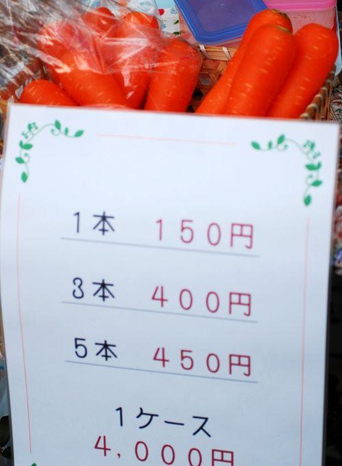 にんじん祭り!_f0224567_2391187.jpg