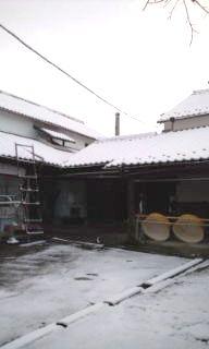 プチ便り(積雪)_a0206870_0592678.jpg