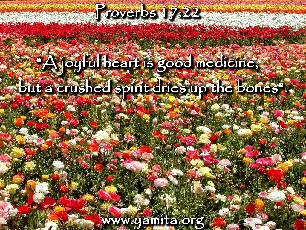 12月27日ヨハネの黙示録7-9章『天国での報い』_d0155777_10195014.jpg