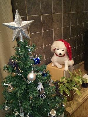 クリスマスの思い出_f0220089_20333718.jpg