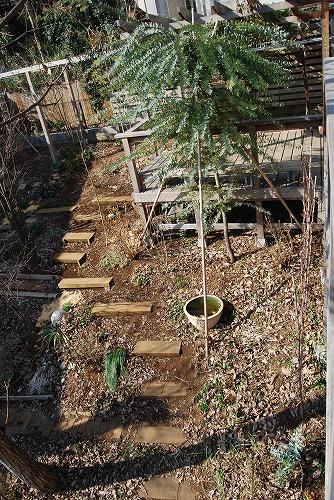 2011年の庭…_c0124100_10433282.jpg