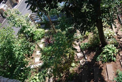 2011年の庭…_c0124100_10514127.jpg