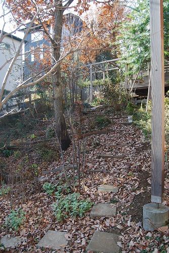 2011年の庭…_c0124100_10524864.jpg