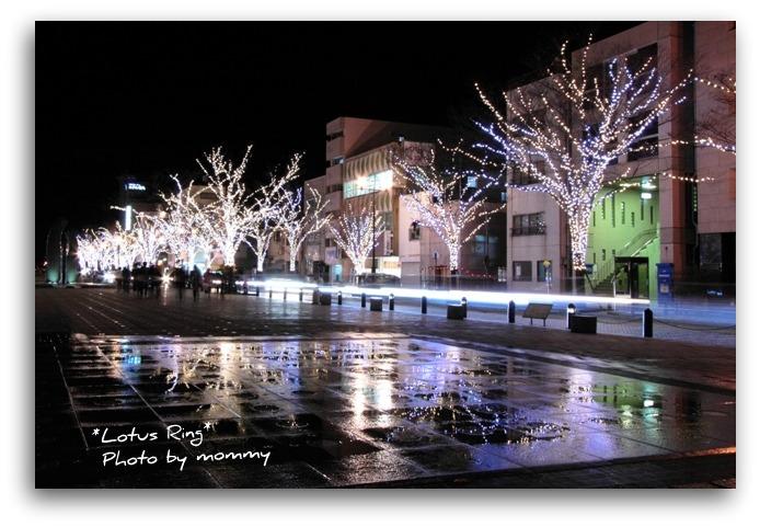 クリスマスイルミネーション_a0169912_7303672.jpg