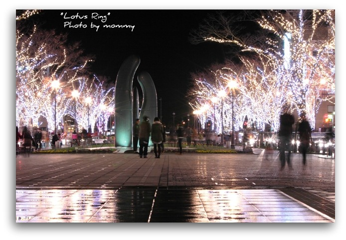 クリスマスイルミネーション_a0169912_730435.jpg