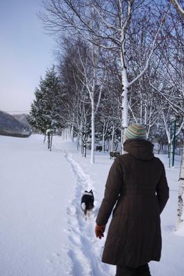 雪大好き_d0233474_1238060.jpg