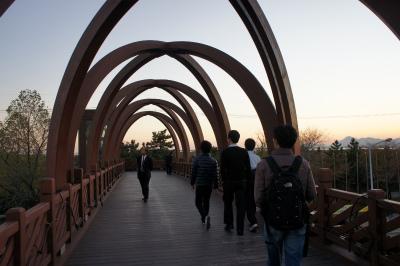 韓国に飫肥杉製の歩道橋?_f0138874_1652634.jpg