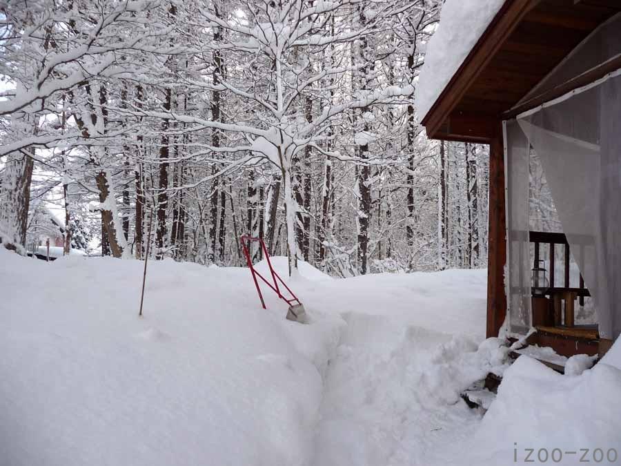 クリスマス寒波がもたらしたもの_c0223095_17104641.jpg