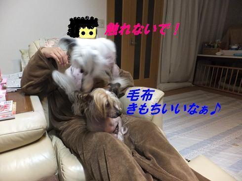 f0179203_924948.jpg