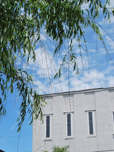 函館銀座通りレトロ建築コレクション・2011(その4)_f0142606_19165276.jpg