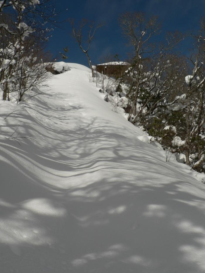 今年の山行きー総括ー_f0219710_829239.jpg