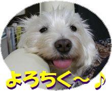f0084422_1531361.jpg