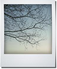 f0161329_16103990.jpg