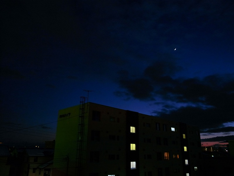 静かな夜 雪が音を吸収して_a0160581_19203763.jpg