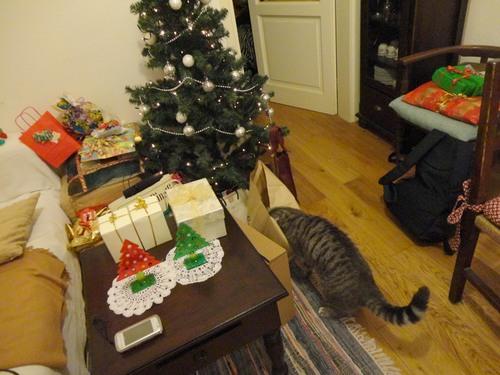 クリスマスプレゼント★★_c0179785_5303923.jpg