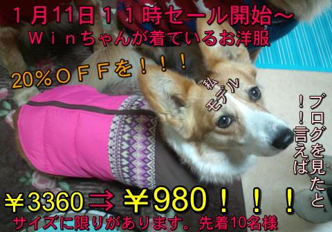 f0234395_1356490.jpg