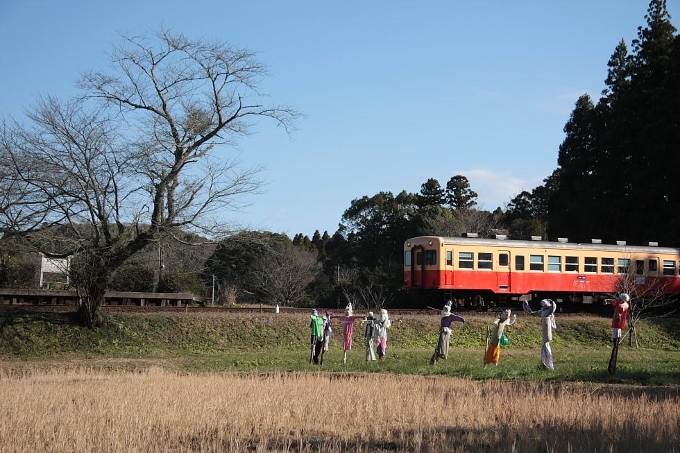 冬の案山子とさくら - 2011年・小湊鐵道 -_b0190710_2036218.jpg