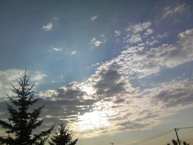 流れる光になる【2年3番♂】_b0134715_0544267.jpg