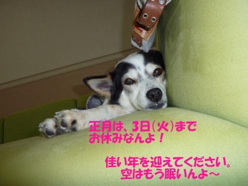 c0113928_16455226.jpg