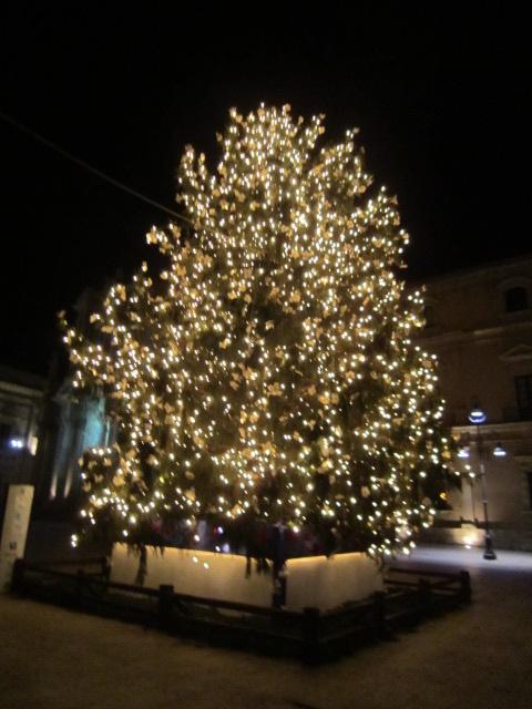 クリスマスモード バゥ_d0084229_1273245.jpg