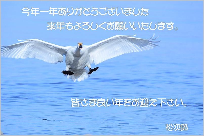 a0123239_19484060.jpg