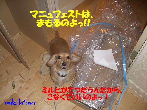 b0115642_20593714.jpg