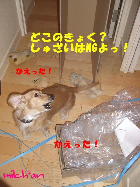 b0115642_20595999.jpg