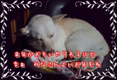 f0195543_22281581.jpg