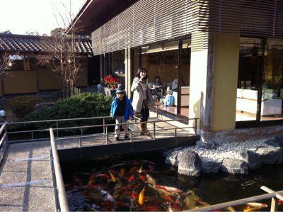 旅館は鯉がいっぱい(^-^)/_f0141246_16343646.jpg