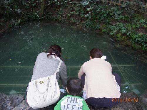 島根・鳥取旅行_d0236863_621874.jpg