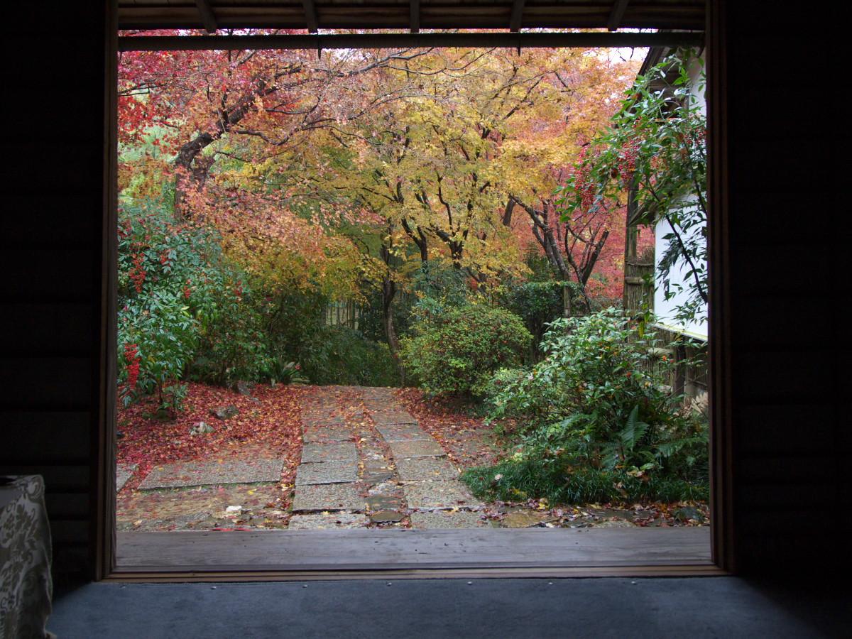紅葉 2011 嵯峨野 直指庵 _f0021869_0284283.jpg