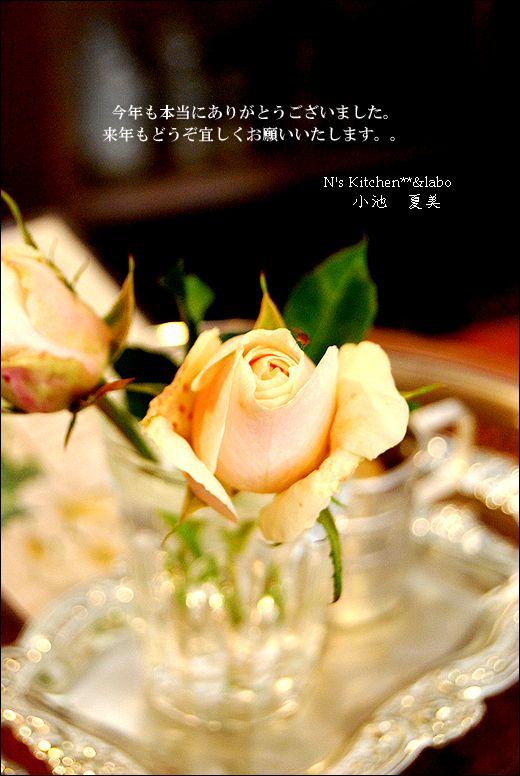 今年もありがとうございました<(_ _)>2011_a0105872_19153641.jpg