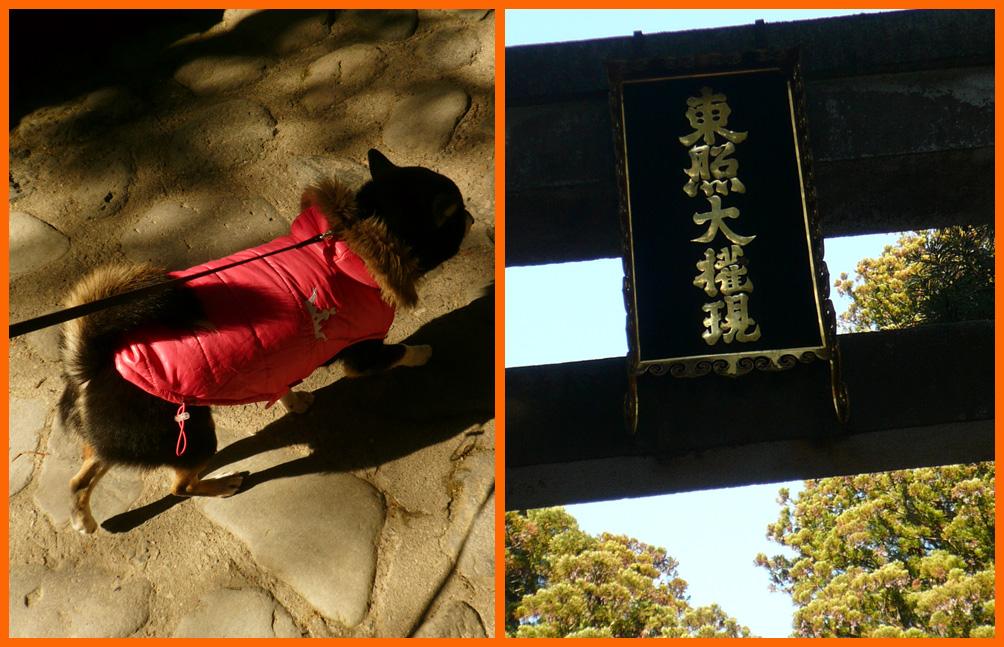 日光東照宮へお参り。一年の感謝と来る年のお願い。_e0236072_22494166.jpg