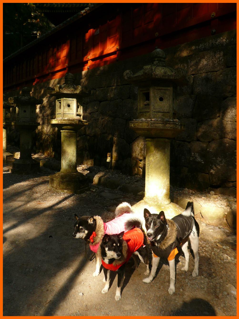 日光東照宮へお参り。一年の感謝と来る年のお願い。_e0236072_2374987.jpg