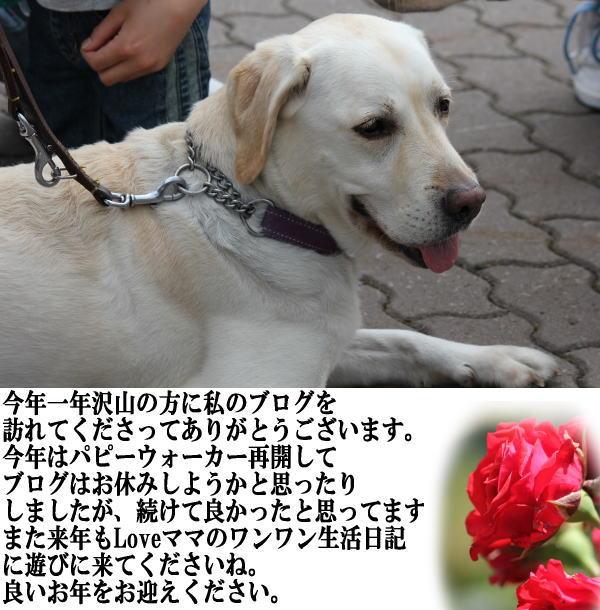 b0136683_172927.jpg