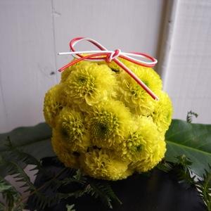 菊のお飾り 初日の出の巻_d0104091_10505991.jpg