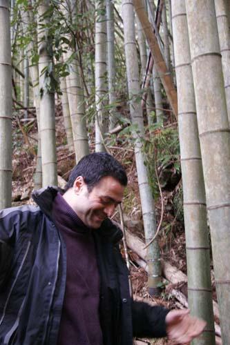 日本古来の素材_f0106597_9175571.jpg