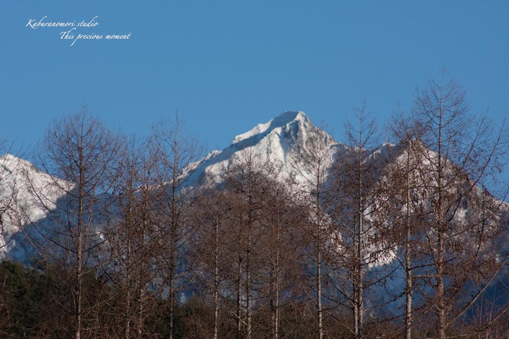 撮り納めに凛とした八ケ岳を_c0137403_18471348.jpg