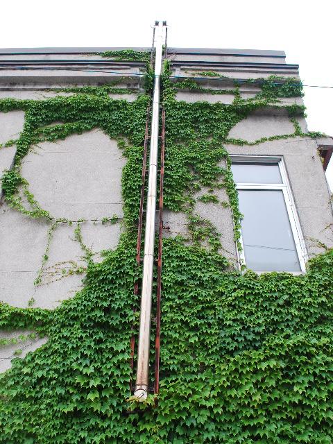 函館銀座通りレトロ建築コレクション・2011(その1)_f0142606_1940393.jpg