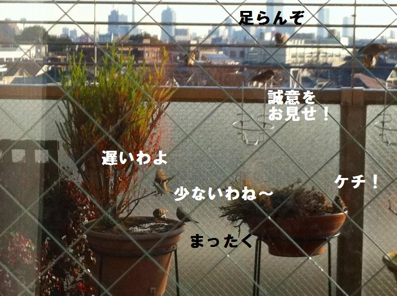 a0147921_2252992.jpg