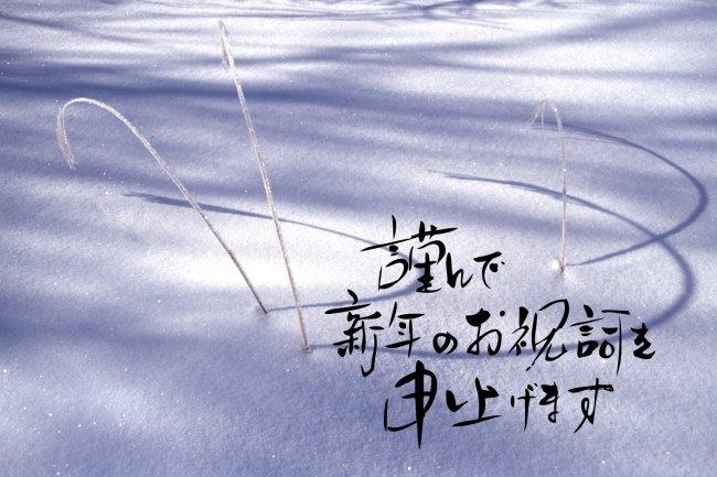 明けましておめでとう~_c0047422_1995925.jpg