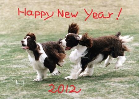 happy new year_d0171630_21222755.jpg