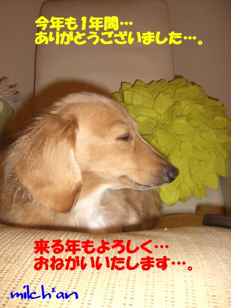 b0115642_2251073.jpg