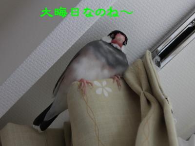 b0158061_1722464.jpg