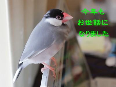 b0158061_17225269.jpg