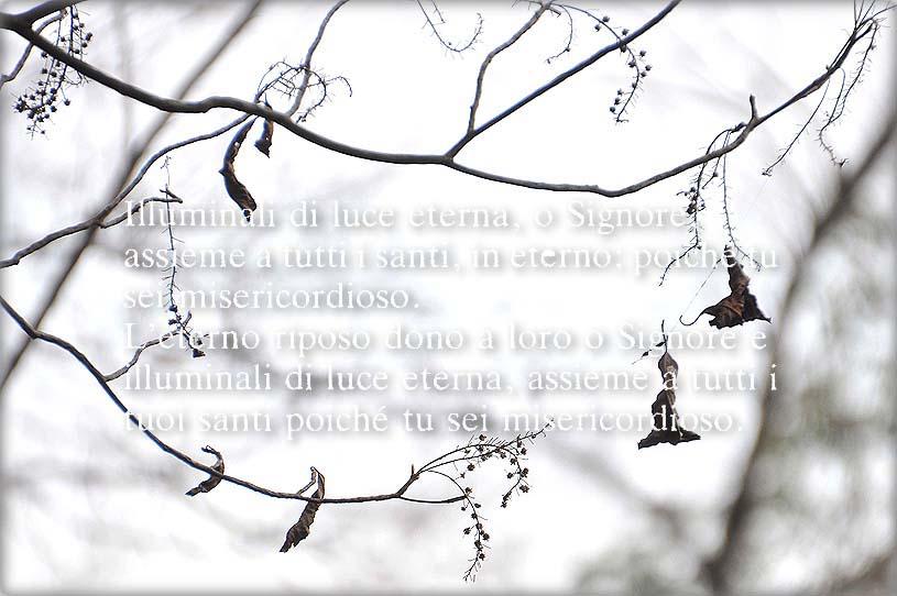 f0198771_013389.jpg