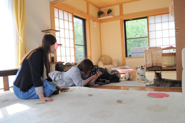 かぼす家2011年10大ニュース!!_a0126590_95165.jpg