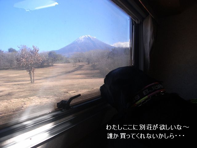 a0093592_20343364.jpg