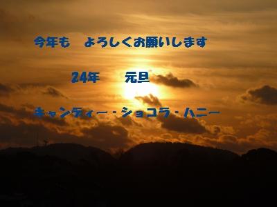 d0150013_10524915.jpg
