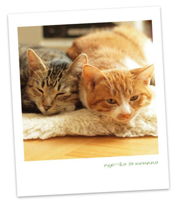 Happy 2012 _a0094336_837079.jpg